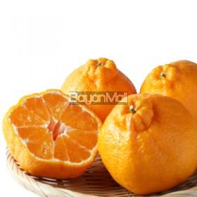 Poncan per kilo - Fresh Fruit